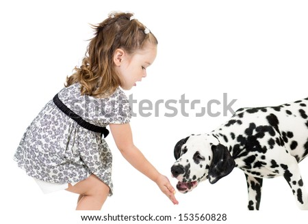 kid girl feeding dog - stock photo
