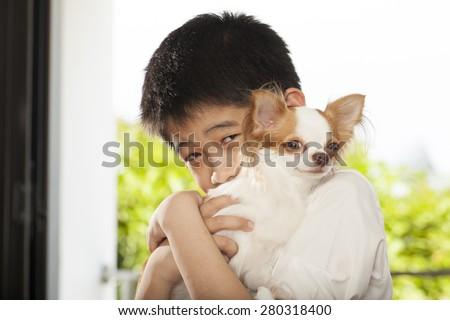 kid life, an Asian boy hug his Chi hua hua tiny dog - stock photo