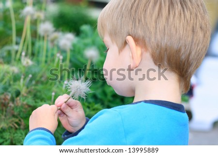Kid looking at the flower