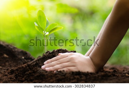 Kid planting and seeding with sunlight over green background