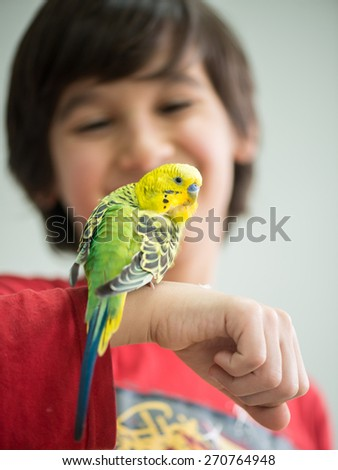 Kid playing with his pet parrot - stock photo