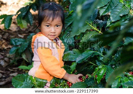 kid with coffee berries