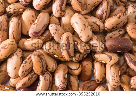 Kidney bean isolated on white background - stock photo