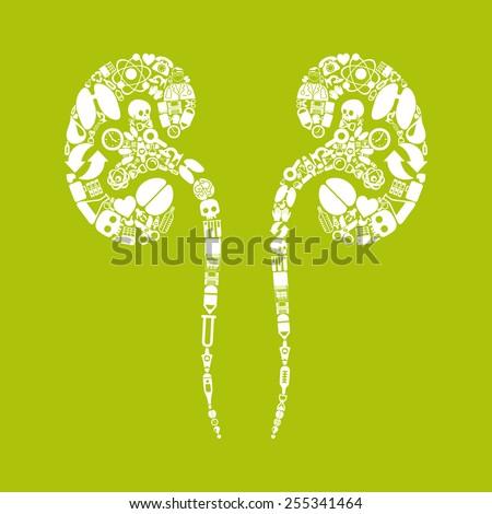 kidneys icon - stock photo