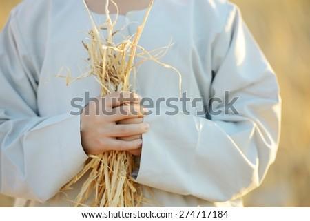 Kids on wheat field - stock photo