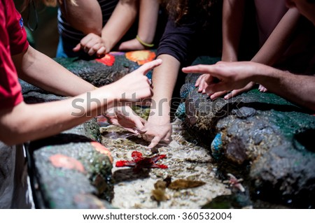 Kids playing with fishes in aquarium - stock photo