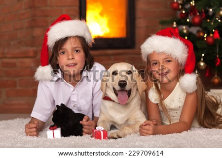 Kids with their pets at christmas time - enjoying the warmth of fireplace - stock photo