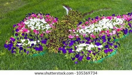 KIEV, UKRAINE, JUNE 17: Butterfly? Flower Show in Kiev, dedicated to the European football championship held in Ukraine and Poland. June 17, 2012, Kiev, Ukraine - stock photo