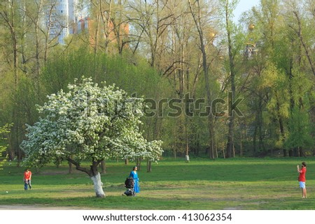 KIEV UKRAINE - MARCH 17, 2013: People relaxing in the park, near blossoming pear - stock photo