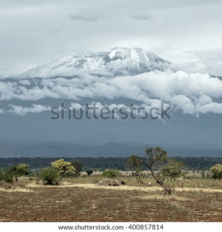 Kilimanjaro on a clear sunny day - Tanzania, South Africa - stock photo