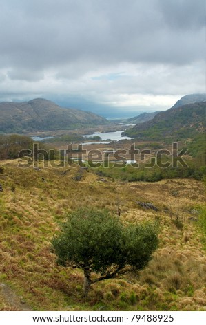 Killarney seen from Ladies View, Ireland - stock photo