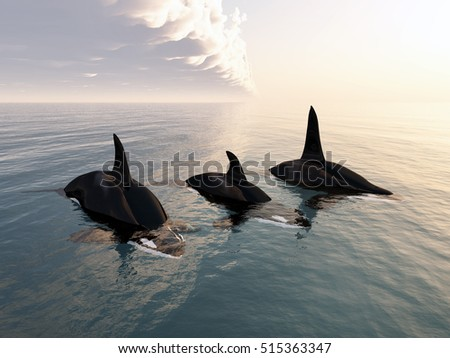 Killer whale family Computer generated 3D illustration