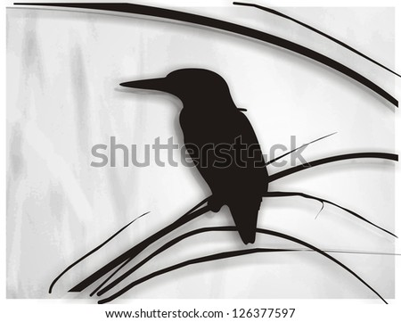 kingfisher kingfisher silhouette of kingfisher