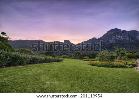 Kirstenbosch National Botanical Garden is acclaimed as one of the great botanic gardens of the world. Located in Cape Town, South Africa, the garden is host to thousands of plant and animal species.  - stock photo