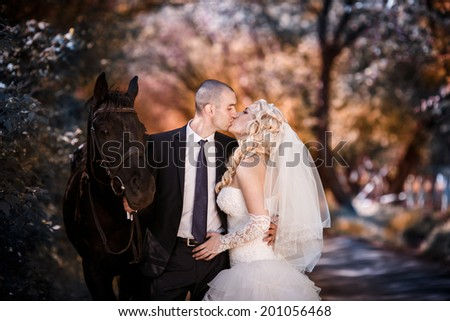 Kiss of the groom and the bride during walk in their wedding day against a black horse - stock photo