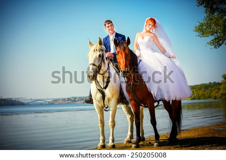 Kiss of the groom and the bride during walk in their wedding day against a white horse and brown horse - stock photo