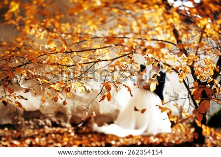 Kissing bride and groom in their wedding day near autumn tree - stock photo