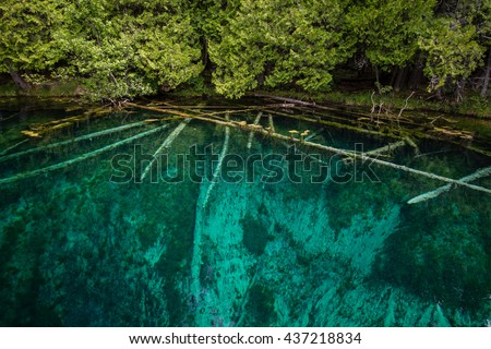 Kitch-i-ti-ki-pi Spring In Palms Book State Park. The shoreline of Kitch-i-ti-ki-pi spring is Michigan's largest freshwater spring located outside of Manistique in Michigan's Upper Peninsula. - stock photo