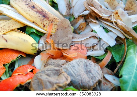 Kitchen and garden vegetable waste on a compost heap.                        - stock photo