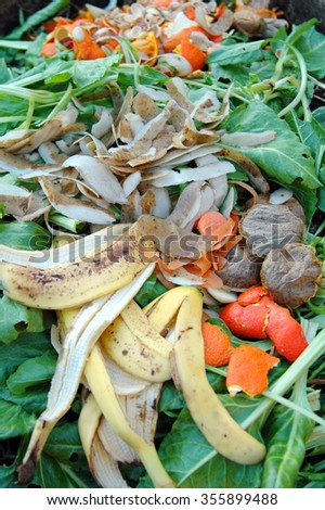 Kitchen and garden waste on a household compost heap.                        - stock photo