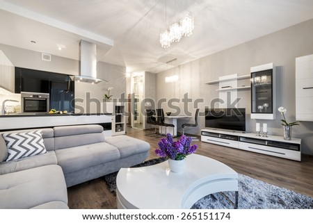 Kitchen and living area in luxury home in scandinavian style - stock photo
