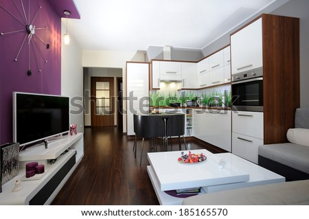 Kitchen and living room in one area - stock photo
