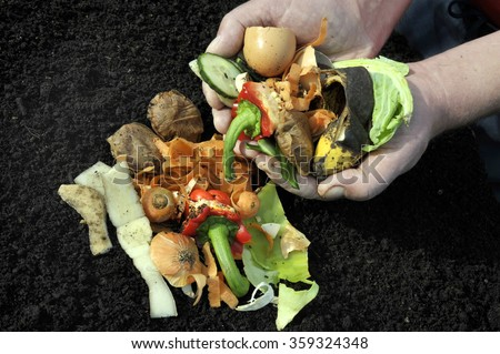Kitchen food vegetable waste materials for home composting. - stock photo