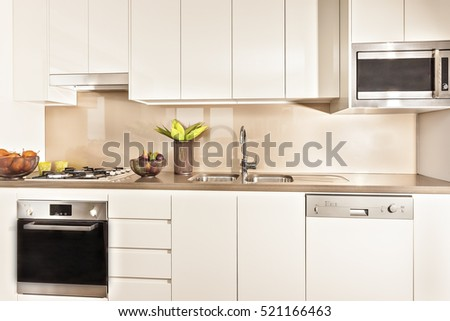 Kitchen interior and tools illuminated with lights, oven and gas cooker have attached to the pantry cupboard, flower pot also fruits plate near the wash basin, perfect lightning.