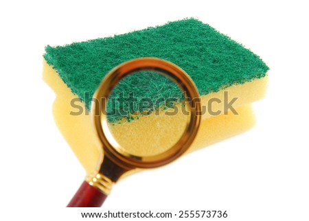 Kitchen Sponge Magnifying Glass Concept Bacteria Stock Photo ...
