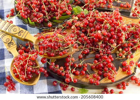 Kitchen still life with  red currant in spoons and on table - stock photo