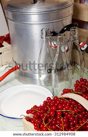 Kitchen utensils and ingredients for manufacturing of currant syrup