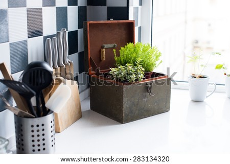 Kitchen utensils, decor and kitchenware in the modern kitchen interior close-up. Home plants on a windowsill. - stock photo