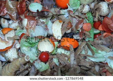 Kitchen waste on a compost heap left to decompose. - stock photo