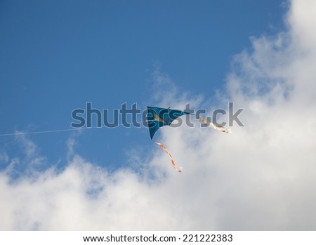 Kite Delta flying in blue sky