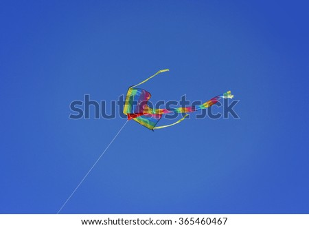 Kite in dark blue sky background
