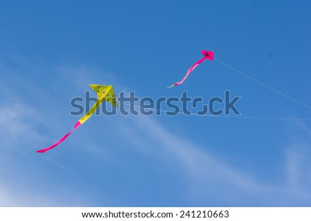 Kites in the clear sky