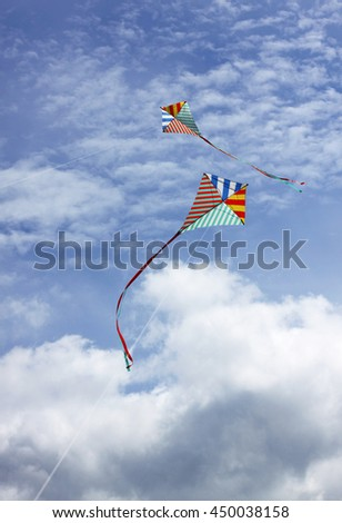 Kites in the sky