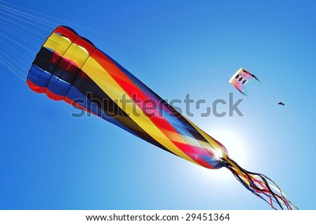 kites with the blue sky as the background