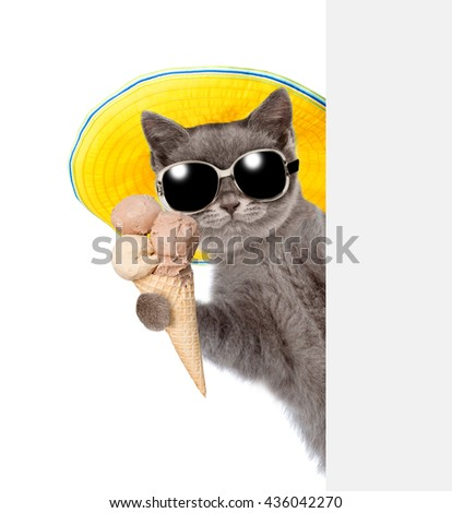 Kitten in sunglasses and hat holding ice cream and peeking from behind empty board. isolated on white background - stock photo