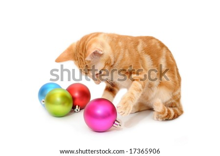 Kitten playing christmas balls in isolated white background