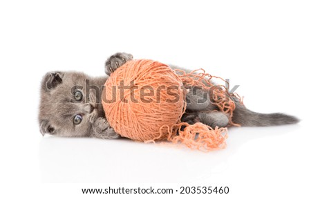kitten playing with a ball. isolated on white background - stock photo