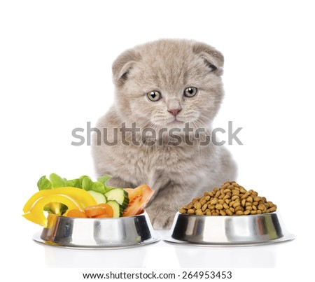 Kitten sitting with a bowls of dry cat food and vegetables. isolated on white background