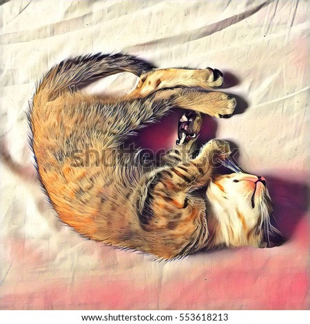 Kitten sleeps on bed digital illustration. Young shaggy cat lying on pink bedding cover. Cozy home scene with lazy pet. Domestic animal portrait. Fluffy kitty with small paws rests in curl position