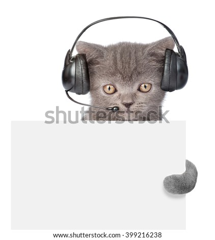 kitten with phone headset peeking from behind empty board. isolated on white background - stock photo