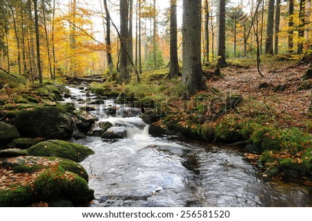 Kleine Ohe in national park bavarian forest. - stock photo