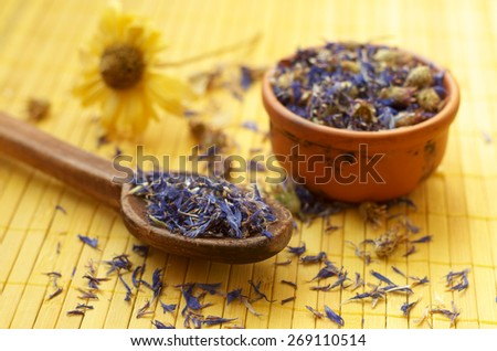 Knapweed, cornflower dried petals. Homeopathy. - stock photo