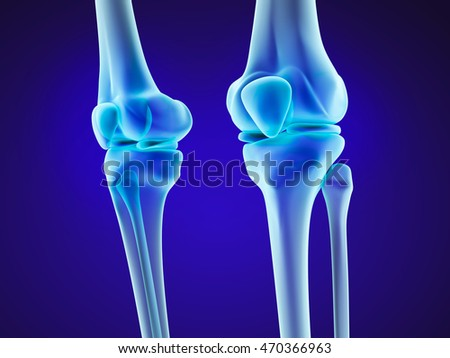 Knee anatomy xray view medically accurate stock illustration knee anatomy xray view medically accurate 3d illustration ccuart Images