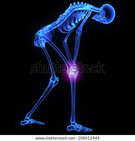 Knee joint - stock photo