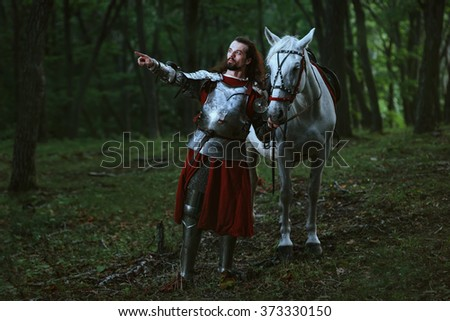 Knight in forest - stock photo