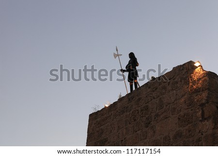 Knight on wall in the Rhodes old town